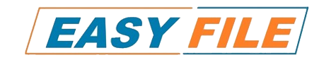 easy-file-india-logo